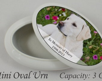 Mini Cremation Urn for Pets Ashes - Urn Pets - Urn Pet Ashes - Mini Urn for Dog Cat Ashes