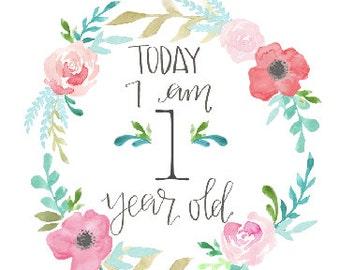 Baby monthly milestone sign