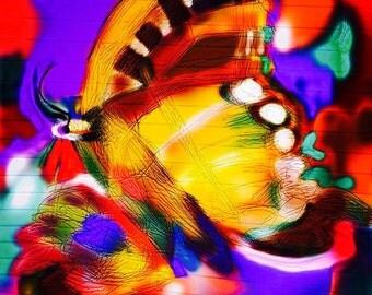 Artful Butterfly