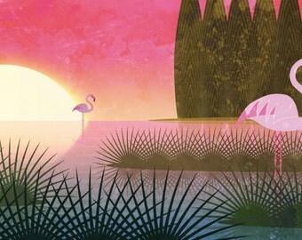 Narava - Pink flamingos