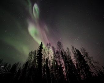 Coronals in the Sky Aurora Borealis Picture