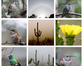 Desert Collage Fine Art Photography