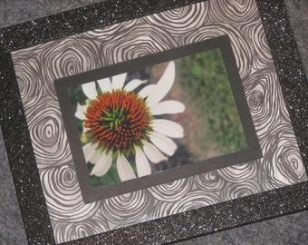 Cone-flower in Swirls
