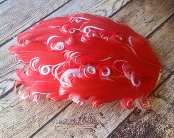 Red/White Nagorie Pads - Curly Feather Pads - Feather Pads - Headbands - Goose Feathers Fascinators Hair Piece Hat Embellishments.