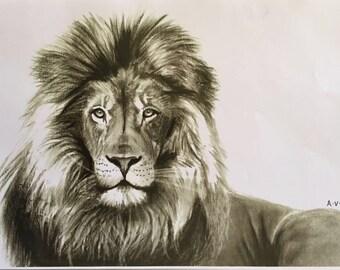 Lion Drawing (Print)