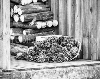 Wood and Cones, ready for winter Photography Print Canvas Art