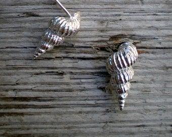 Spiral Shell Post Earrings