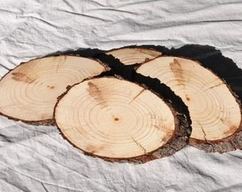 6 Inch Wood Slices, Oblong Wood Slices, Large Wood Slices, Pine Slices, Tree Slices, Rustic Wedding Slices