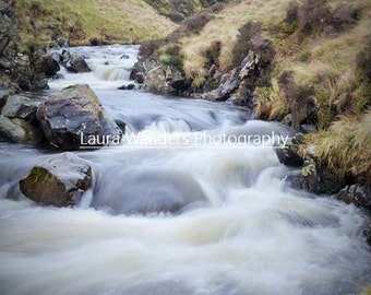Grey Mare's Tail Print