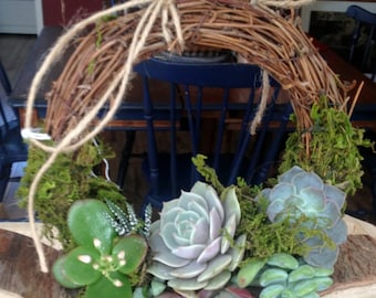 """6.6"""" Succulent Wreath"""