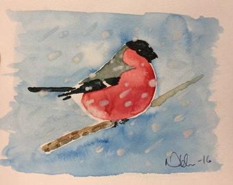 Domherre(Bullfinch)
