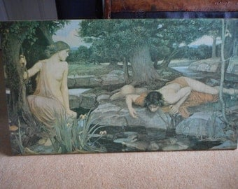 Echo and Narcissus by John William Waterhouse POSTER