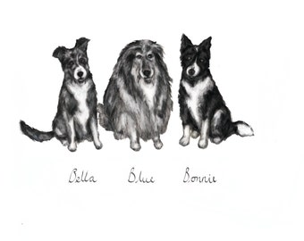 Custom Pet Portrait (black & white)