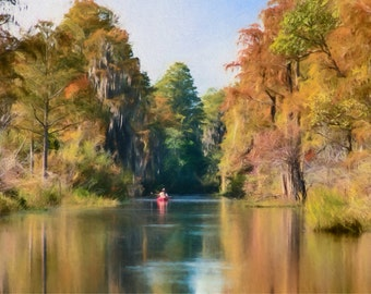 Kayak, Cypress, Fall Colors, Red Cypress, Okefenokee Swamp, Large Wall Art, Water Reflections, Trees, Large Artwork, Available on Canvas