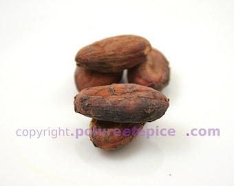 COCOA beans, whole, raw - COCOA, bean, raw, whole