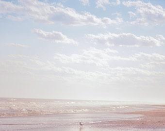 Beach Photography, Wall Art, Print Photography, Sea Side, Bird Photography