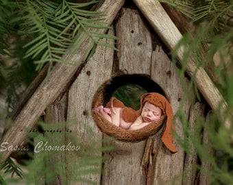 digital backdrop , background  newborn boy or girl fairy tail outdoor nature forest