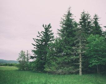 Nature photography print, landscape photography, mountain photography, nature decor