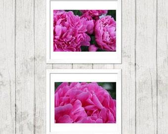 Pink Flowers Wall Art Set, Art Nature Photography, Wall Art, Home Decor, Summer, Pink, Floral Photography, Peony Flowers, Photography Set