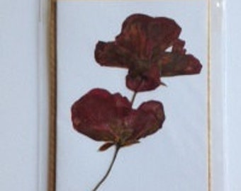 Handmade Pressed Flower Gift Card 'Geranium' Design