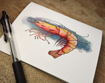 Shrimp Under the Sea notecard multi-pack