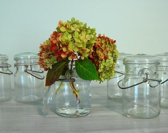 Lot 1/Vintage Wire Bale Glass Lid Mason Canning Jars- Set of Six