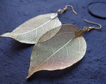 Real Natural Leaf Earrings, Gold Plated