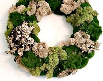 Variety Moss Wreath