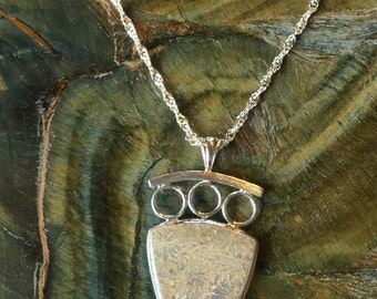SS Fossil coral Pendant