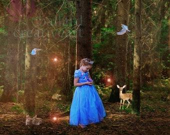 Fantasy photography digital backdrop