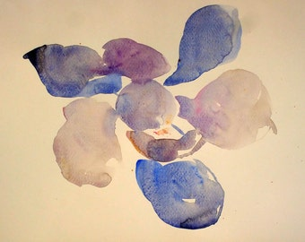 white flower magnolia 7. watercolor to decorate, alone or in the company of her sisters in series. measures 27 x 35, signed and without frame