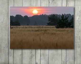 Nature Landscape Photography Print, Morning Meadow Prints Large Canvas Wall Art Prints, Nature Wall Decor Bedroom at Sunrise