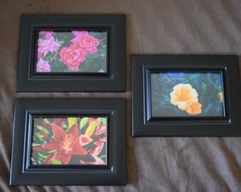 "Set of 4""x6"" Floral Photos"