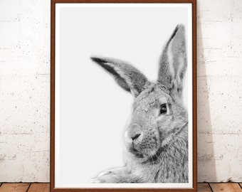 Rabbit Print, Rabbit Wall Art Decor, Rabbit Printable Art, Instant Digital Download, Animal Print, Black and White, Rabbit Art, Rabbit Photo