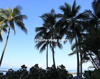 Hawaii Waikiki bech Digital Photo Download