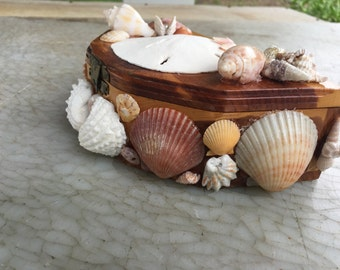 Seashell Storge Box