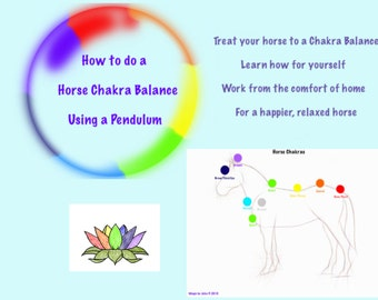 How to guide - Horse Chakra Balance