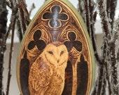 Barn Owl Ornament egg gourd