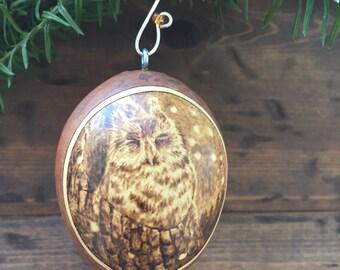 Winter Screech Owl Ornament egg gourd