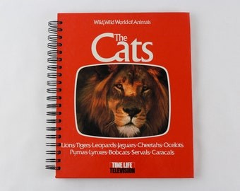 Cats- Recycled Book Journal- Notebook, Sketchbook, made from altered book