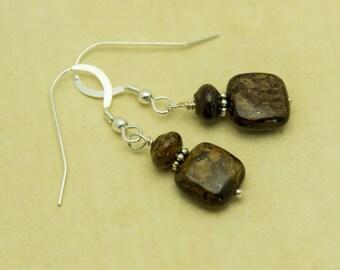 SALE- Earthy Bronzite Earrings