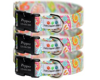 Engraved Dog Collar - Spring Paisley Dog Collar - Cabana (Shown with optional Enraving)