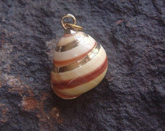 Pendant, Necklace Pendant, Shell Pendant, Ocean Pendant, Ocean Charm, Pendant Charm, Shell Charm