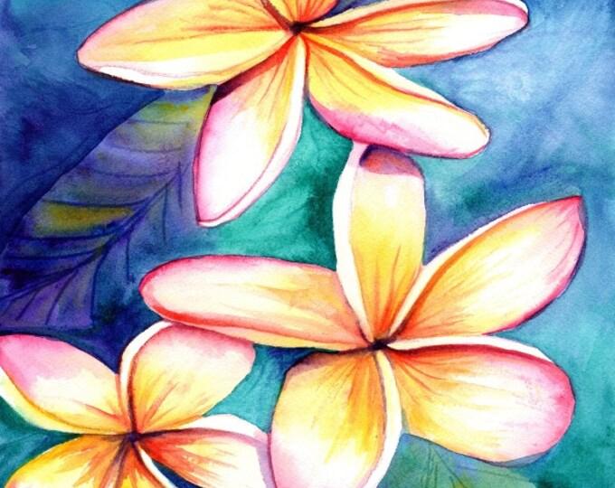 Plumeria print 8x10 from Kauai Hawaii frangipani hawaii art kauaiartist Hawaiian art Kauai art tropical flowers