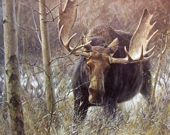 "MOOSE, BULL called ""The Challenge"" on One 16 inch Square Fabric Panel to Quilt or Sew. Picture is 8"" x 10""."