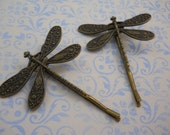 Pair of Brass Dragonfly Bobby Pins Nature Woodland Metal Dragonflies on Brass Bobby Pins