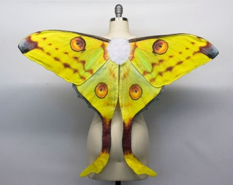 Made to Order Comet Moth Costume Wings for Halloween, Madagascan Moon Moth Costume, Argema Mittrei