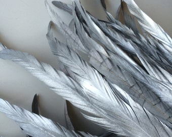 COQUE TAIL FEATHERS Loose / Metallic Silver Grey / 209