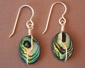 Paua Shell Wire-wrapped e...