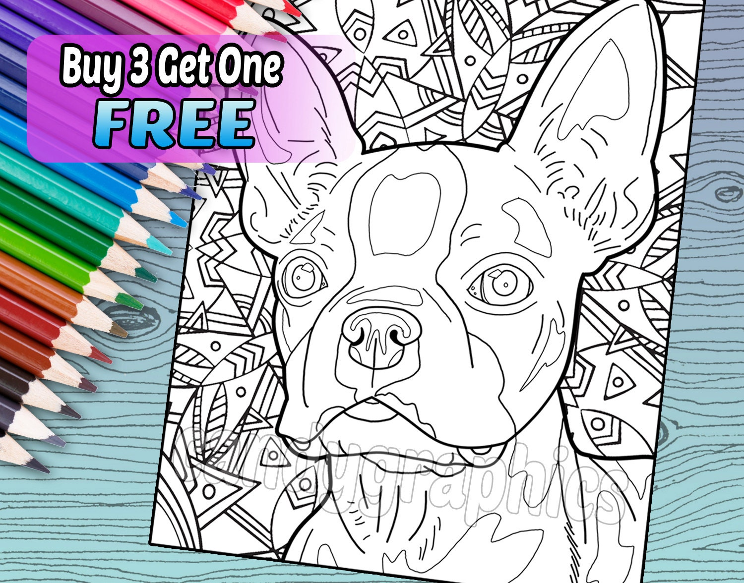 boston terrier coloring book page printable instant